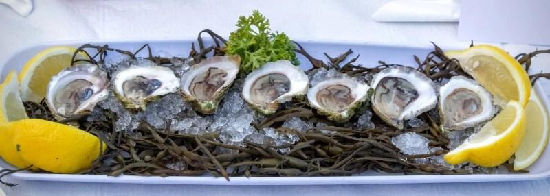 Stop Being So SHELLFISH! #LobstahPalooza2015 — An Adventure in Atlantic Ambrosia! — PEI Oysters