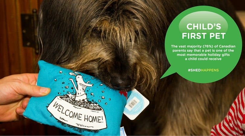Life as a Swiffer Fanatic, Vol. 2 — Fighting Messes from Other People's Pooches... Because #ShedHappens — Child's First Pet