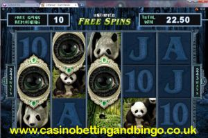 Untamed Giant Panda Free Spins Feature