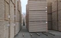Analýza dopadu investice společnosti Holzindustrie Schweighofer na Vodňany