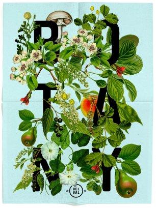 DanBlackman_BotanyPoster-1998x2669