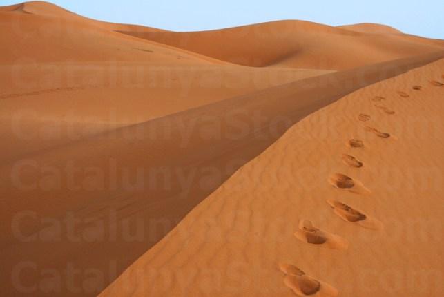 the Erg Chebbi Dunes,Merzouga. Tafilalet. Morocco.Africa