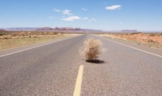 Photo of a tumbleweed blowing on a very desolate road.