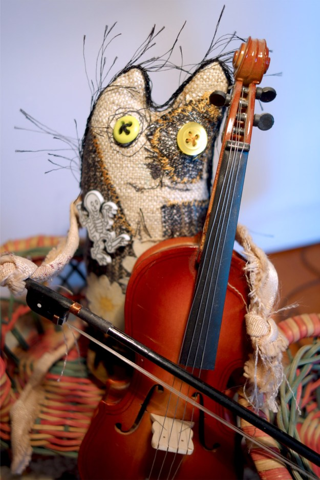 Frankencat continues playing the cello.
