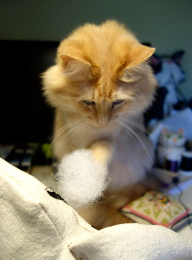 Rudy, the beautiful long-haired orange cat has some doll stuffing on the end of his paw. He looks like he is really helping!