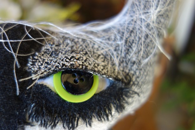 A closeup of a soft sculptured cat doll's eye with eyelid detailing and frayed lashes under the eye.