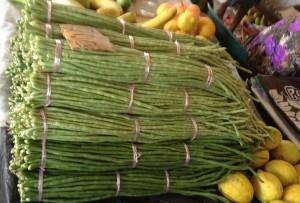 World's Longest String Beans