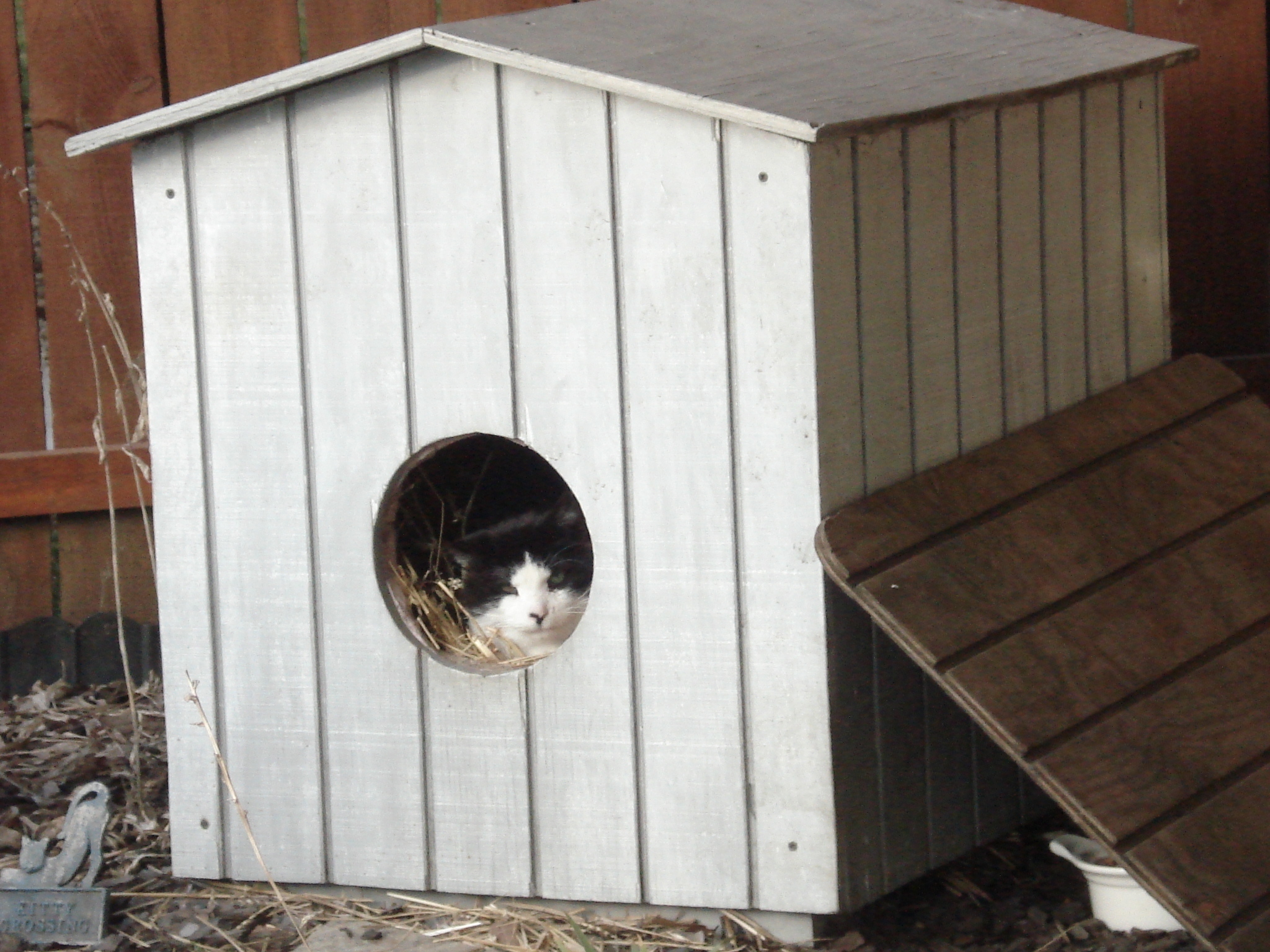How to Make Cat Houses From Rubbermaid Totes | eHow