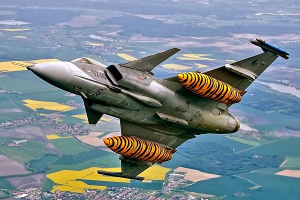 Saab_Gripen_LionEffort2015 (14)