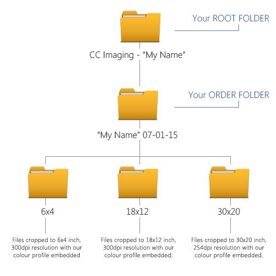 organising folders and image files