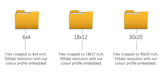 adding files to folders