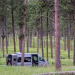 Campground in the Black Hills National Forest