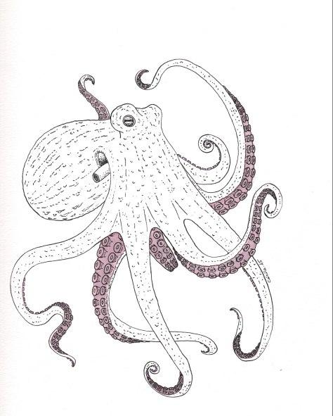 """Pieuvre. Illustration pour la revue """"Universitas"""" (Université de Fribourg, Suisse), septembre 2015"""