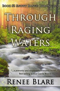 RagingWaters copy