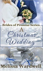 Melissa wardwell book christmas