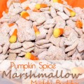 Pumpkin Spice Marshmallow Muddy Buddies