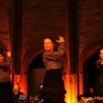 Noche Flamenca 2016_Ralf Bieniek_09