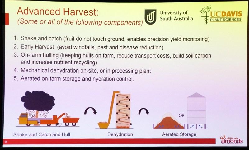 Large Of Precision Pest Control