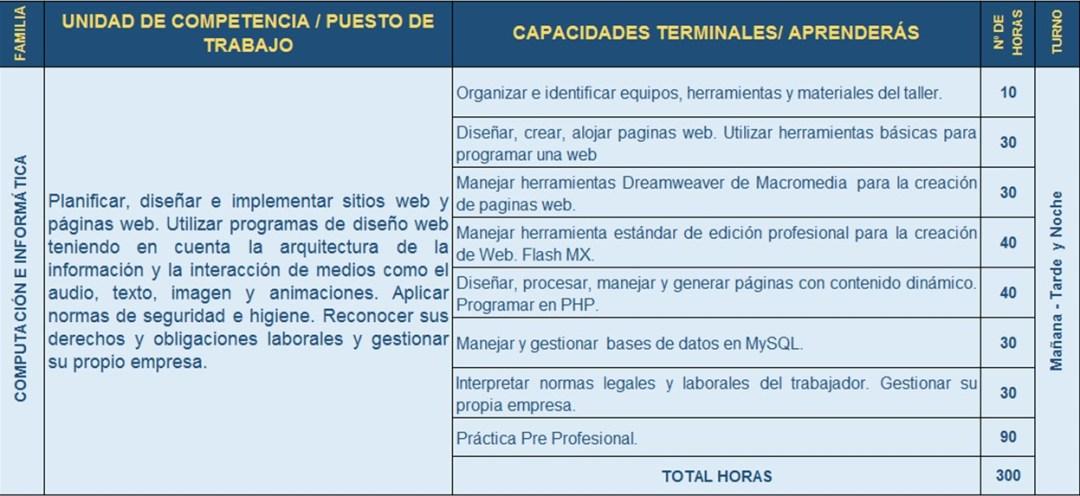 CICM07_Diseño y programación Pagina Web
