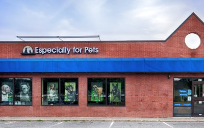424 Boston Post Road, Sudbury