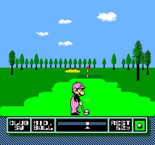 Developer: Nintendo Publisher: Nintendo Genre: Sports/Golf Released: September 1, 1991 Rating: 4.5