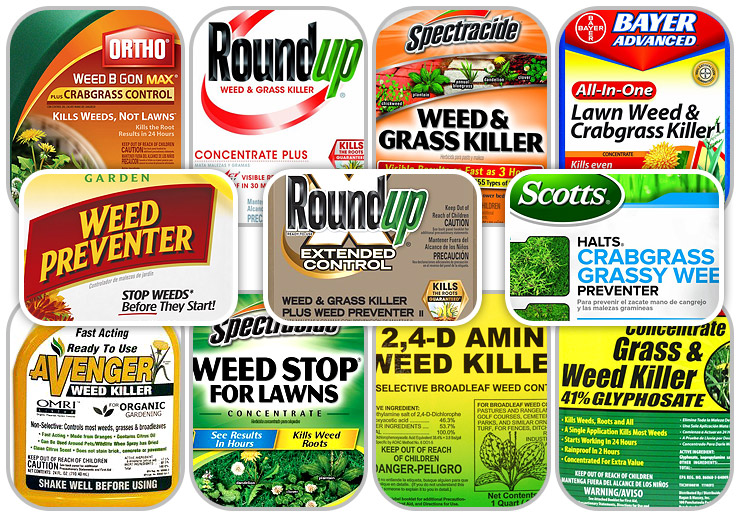 Best Weed Killer For Lawns Chainsaw Journal