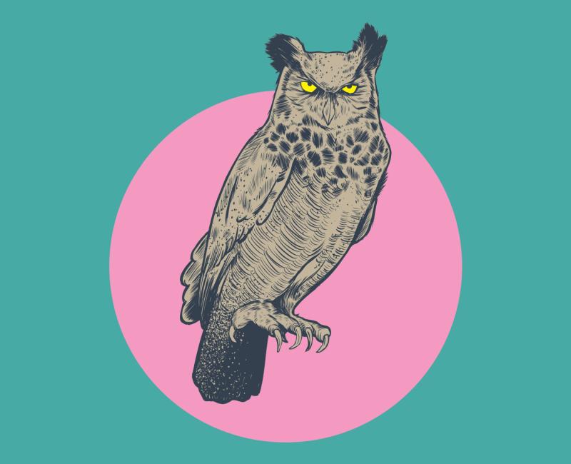 Owl Play Print