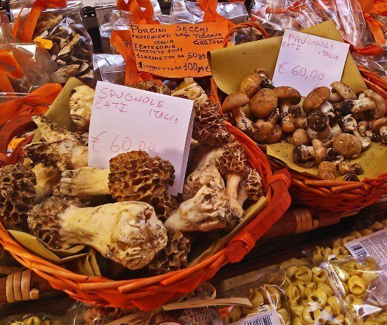Bologna mushrooms