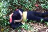 #AlertaDeGénero Localizan A Una Mujer Muerta, Tenía Lesiones De Arma Blanca