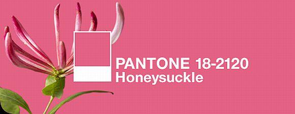 pantone_pink_2011.jpg