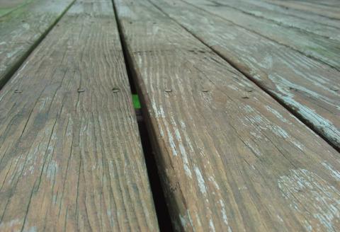 staining deck.jpg