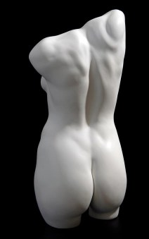 Female-Torso,-back