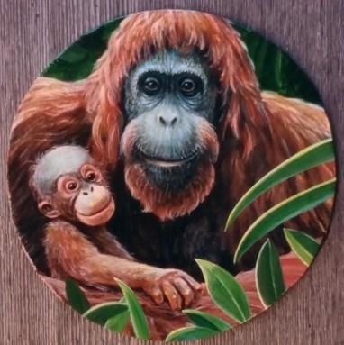 Orangutan and Baby, circle