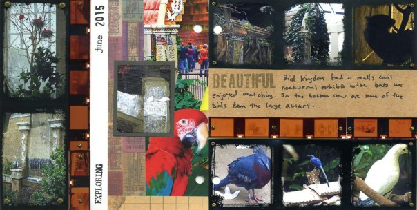Two page spread of 6 x 6 scrapbook pages that use discarded photo negatives as a decorative accent.