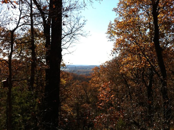 View from the top of one of the ridges in West Tyson County Park