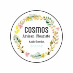 LOGO cosmos fleuriste
