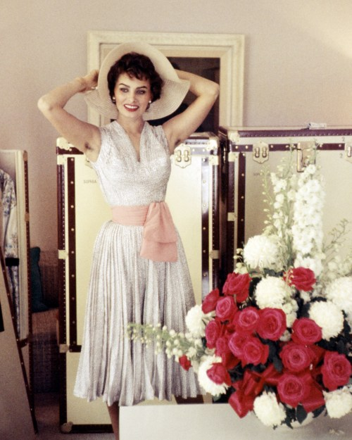 Medium Of Sophia Loren Hot