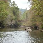 Upstream on West Fork#3