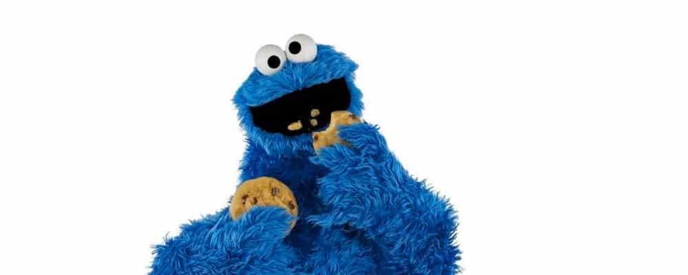 Welches sind gute WordPress Plugins für die Cookie-Hinweise?