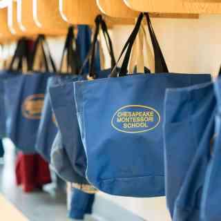 CMS Bags