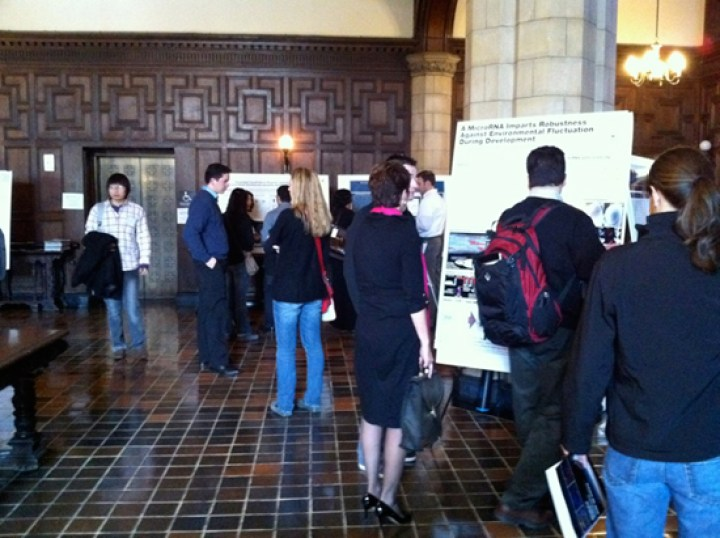 posters-symp_2010