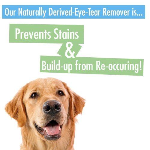 Medium Crop Of Dog Tear Stains