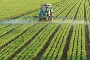 Resultado de imagen de pesticidas cultivos