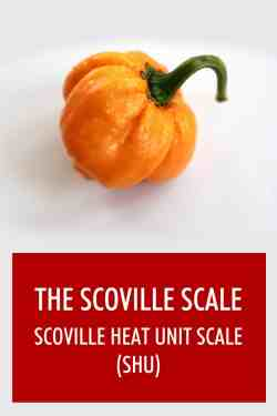 Small Of Pepper X Scoville