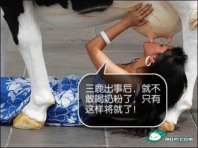 Sanlu Photoshop: Woman drinking from cow.