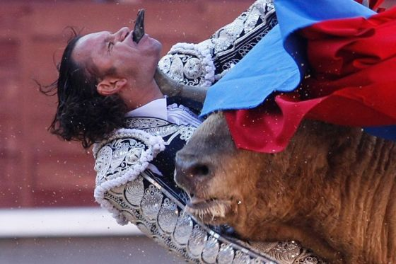 Spanish Bullfighter Julio Aparicio is gored by a bull during a bulfight of the San Isidro Feria at the Las Ventas bullring in Madrid, on may 21, 2010.    TOPSHOTS/AFP PHOTO/ ALBERTO SIMON