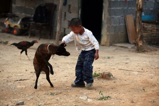 6-Year-Old AIDS Orphan A-Long Lives Alone In Guangxi