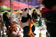 panda-shorts-chinese-girls-shanghai-61