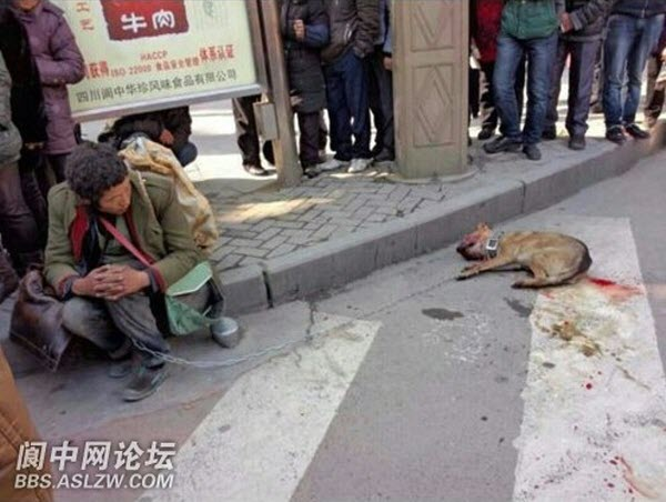 A homeless Chinese man sits on a curb while his pet dog lies lifeless beside him after being beaten to death by local police.