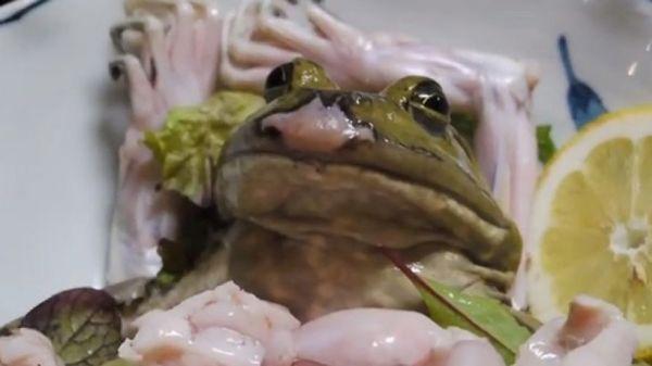 Fresh frog sashimi (sushi) in Japan.